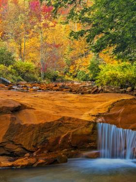 USA, West Virginia, Douglass Falls. Waterfall over Rock Outcrop by Jay O'brien