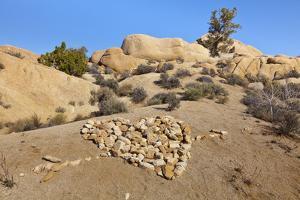 Arrow Through Heart, Joshua Tree NP, California, USA by Jaynes Gallery
