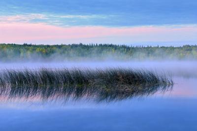 Canada, Alberta, Hondo. Fog on Lawrence Lake at dawn. by Jaynes Gallery