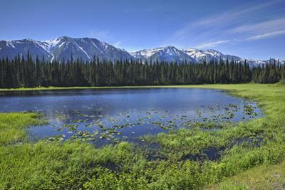 Canada, British Columbia. Mehan Lake and Coast Mountains. by Jaynes Gallery