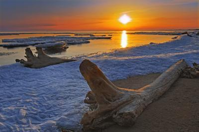 Canada, Manitoba. Ice and driftwood on Lake Manitoba at sunrise. by Jaynes Gallery