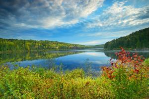 Canada, Ontario, Algonquin Provincial Park. Costello Lake by Jaynes Gallery