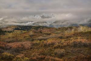 Colorado, Uncompahgre National Forest. Autumn Snowstorm Above Sneffels Range by Jaynes Gallery