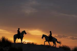 Europe, France, Provence. Silhouette of Camargue horses with guardian riders at sunrise. by Jaynes Gallery