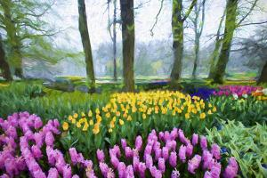 Europe, Holland, Lisse. Abstract of Keukenhof Gardens. by Jaynes Gallery