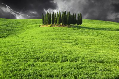 Italy, Tuscany. Lightning behind cypress trees on hill by Jaynes Gallery