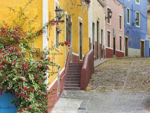 Mexico, Guanajuato. View of Street and Colorful Buildings by Jaynes Gallery
