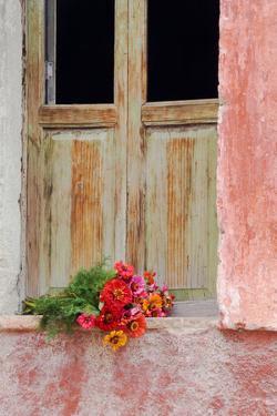 Mexico, San Miguel De Allende. Zinnias Outside Window Frame by Jaynes Gallery