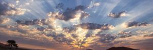Namibia, Namib-Naukluft Park. Panoramic of God beams over desert at sunset. by Jaynes Gallery