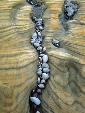 Rocks Caught in Sandstone Formations, Seal Rock Beach, Oregon, USA by Jaynes Gallery