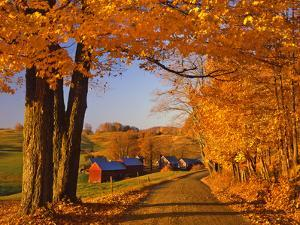 Scenic of Road and Jenne Farm, South Woodstock, Vermont, USA by Jaynes Gallery