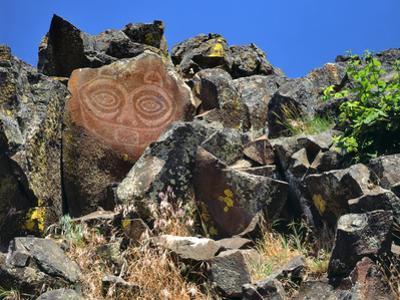 She Who Watches, Tsagaglalal Petroglyph, Washington, USA by Jaynes Gallery