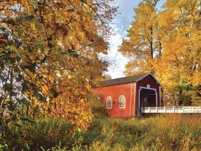 Shimanek Covered Bridge in Morning Light in Lane County, Oregon, USA by Jaynes Gallery