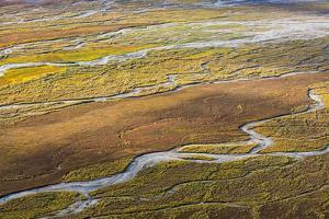 USA, Alaska, Brooks Range, Arctic NWR. Aerial of braided river and tundra. by Jaynes Gallery
