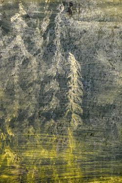 USA, Alaska, Wiseman. Paint on an oil drum. by Jaynes Gallery