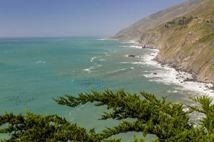 USA, California, Big Sur. Ragged Point landscape. by Jaynes Gallery