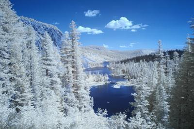 USA, California, Mammoth Lakes. Infrared overview of Twin Lakes. by Jaynes Gallery