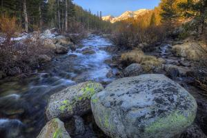 USA, California, Sierra Nevada Range. Rock Creek cascades. by Jaynes Gallery