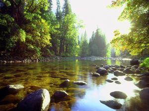 USA, California, Yosemite National Park. the Merced River by Jaynes Gallery