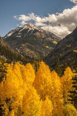 USA, Colorado. Autumn Landscape in San Juan Mountains by Jaynes Gallery