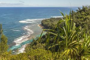 USA, Kauai, Coast. Coastline and ocean landscape. by Jaynes Gallery