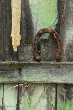 USA, Montana. Rusty Horseshoe on Old Fence by Jaynes Gallery
