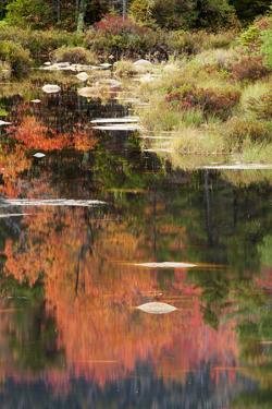 USA, New Hampshire, White Mountains. Autumn reflections in lake. by Jaynes Gallery