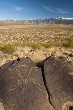 USA, New Mexico. Petroglyph on Rock at Three Rivers Petroglyphs Site by Jaynes Gallery