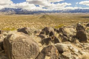 USA, New Mexico, Three Rivers Petroglyph Site. Petroglyphs and desert scenic. by Jaynes Gallery