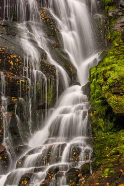 USA, North Carolina, Brevard. Waterfall in Dupont State Forest by Jaynes Gallery
