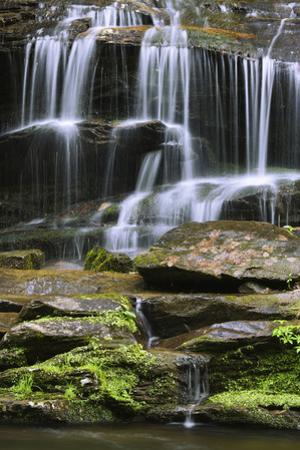 USA, Tennessee, Great Smoky Mountains National Park. Waterfall. by Jaynes Gallery