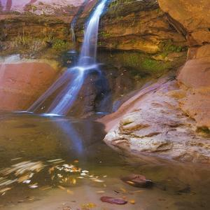 USA, Utah, Zion National Park. Small Waterfall Forms Pool by Jaynes Gallery