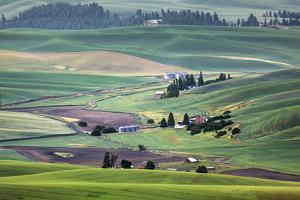 USA, Washington. Landscape of Palouse Country and Farms by Jaynes Gallery