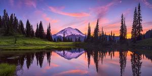 USA, Washington State, Mt. Rainier National Park. Tipsoo Lake panoramic at sunset. by Jaynes Gallery