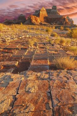 Utah, Glen Canyon Nra. Sunset on Sandstone Formations by Jaynes Gallery