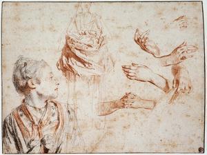 Study, 1716-1718 by Jean-Antoine Watteau
