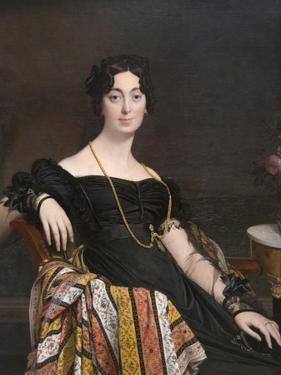 Madame Jacques-Louis Leblanc (Née Françoise Poncelle, by Jean-Auguste-Dominique Ingres