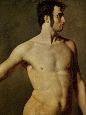 Male Torso by Jean-Auguste-Dominique Ingres