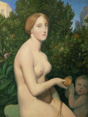 Venus a Paphos, 1852 / 1853 by Jean Auguste Dominique Ingres