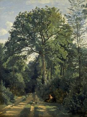 Ville D'Avray: Entrance to the Wood, C.1825 by Jean-Baptiste-Camille Corot