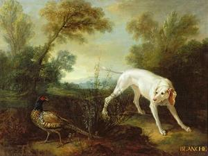 Blanche, Bitch of the Royal Hunting Pack by Jean-Baptiste Oudry