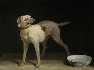 Dog, 1751 by Jean-Baptiste Oudry