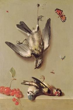 Still Life of Dead Birds and Cherries, 1712 by Jean-Baptiste Oudry