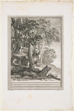 The Dragon of Many Tails, Fable XII, C. 1753-1755 by Jean-Baptiste Oudry