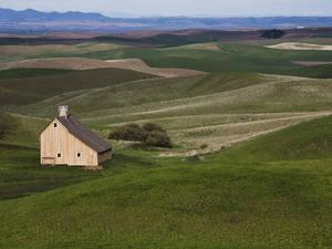 Barn in the Palouse, Idaho, USA by Jean Brooks
