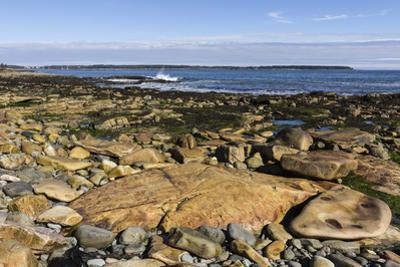 Beach at Seawall, Mount Desert Island, near Arcadia National Park, Maine, New England, USA by Jean Brooks
