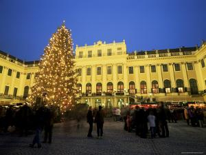 Christmas Tree in Front of Schonbrunn Palace at Dusk, Unesco World Heritage Site, Vienna, Austria by Jean Brooks