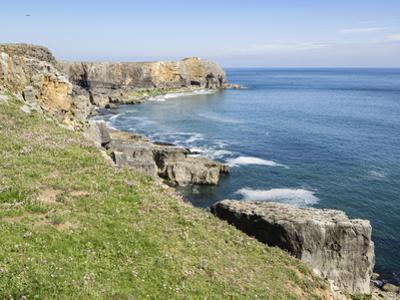 Coast at St. Govan, Pembrokeshire Coast National Park, Pembrokeshire, Wales, United Kingdom, Europe by Jean Brooks