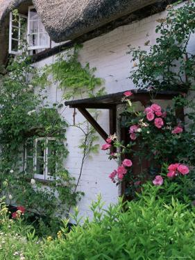 Cottage and Flowers, Wherwell, Hampshire, England, United Kingdom by Jean Brooks