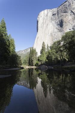 El Capitan, Yosemite National Park, California, United States of America, North America by Jean Brooks